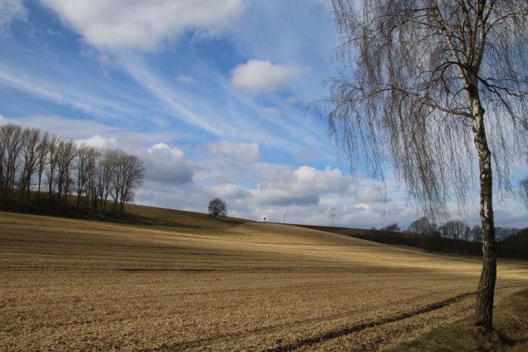 Brakeler Land