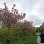 Bei Teltow