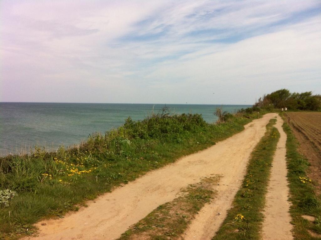 An der Steilküste zwischen Wustrow und Ahrenshoop
